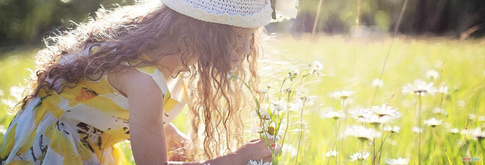 picking-flowers-2432972_1280